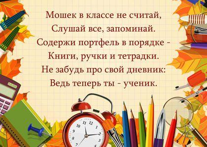 Школьные советы 4